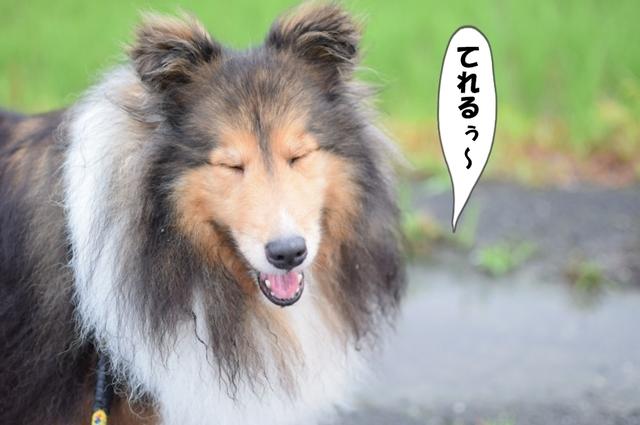 編集DSC_0007.JPG